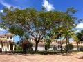 cape-coral-real-estate-cape-harbour-townhomes.jpg