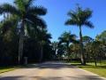 cape-coral-real-estate-cape-royale-enterance-driveway.jpg