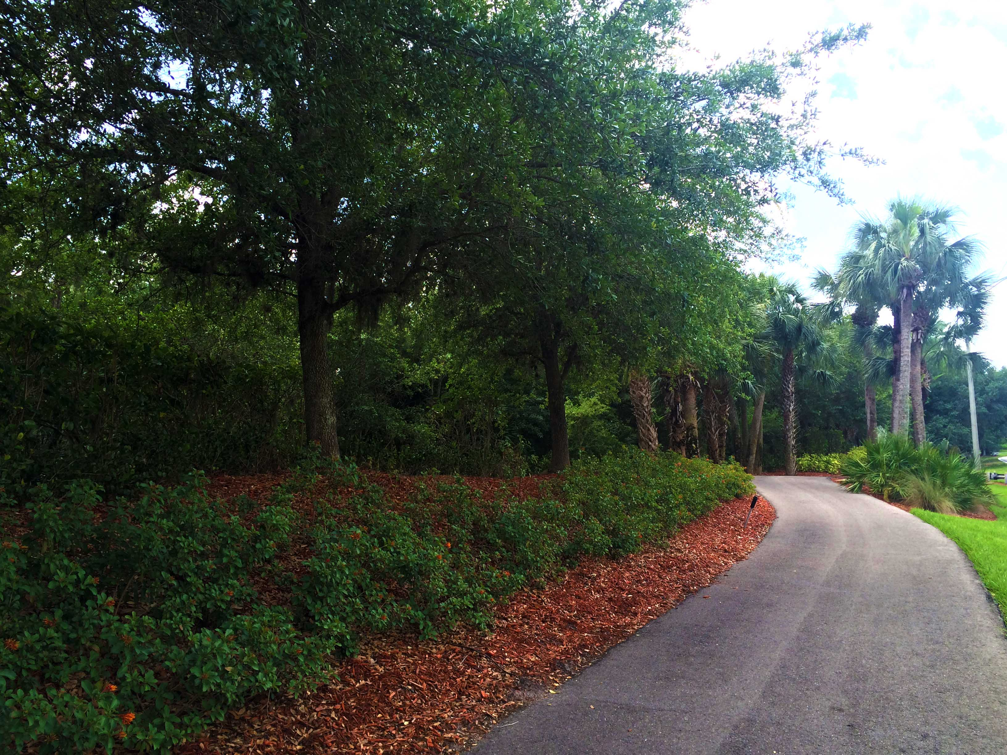 fort-myers-real-estate-moody-river-trails.jpg