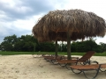 fort-myers-real-estate-oasis-beach.jpg