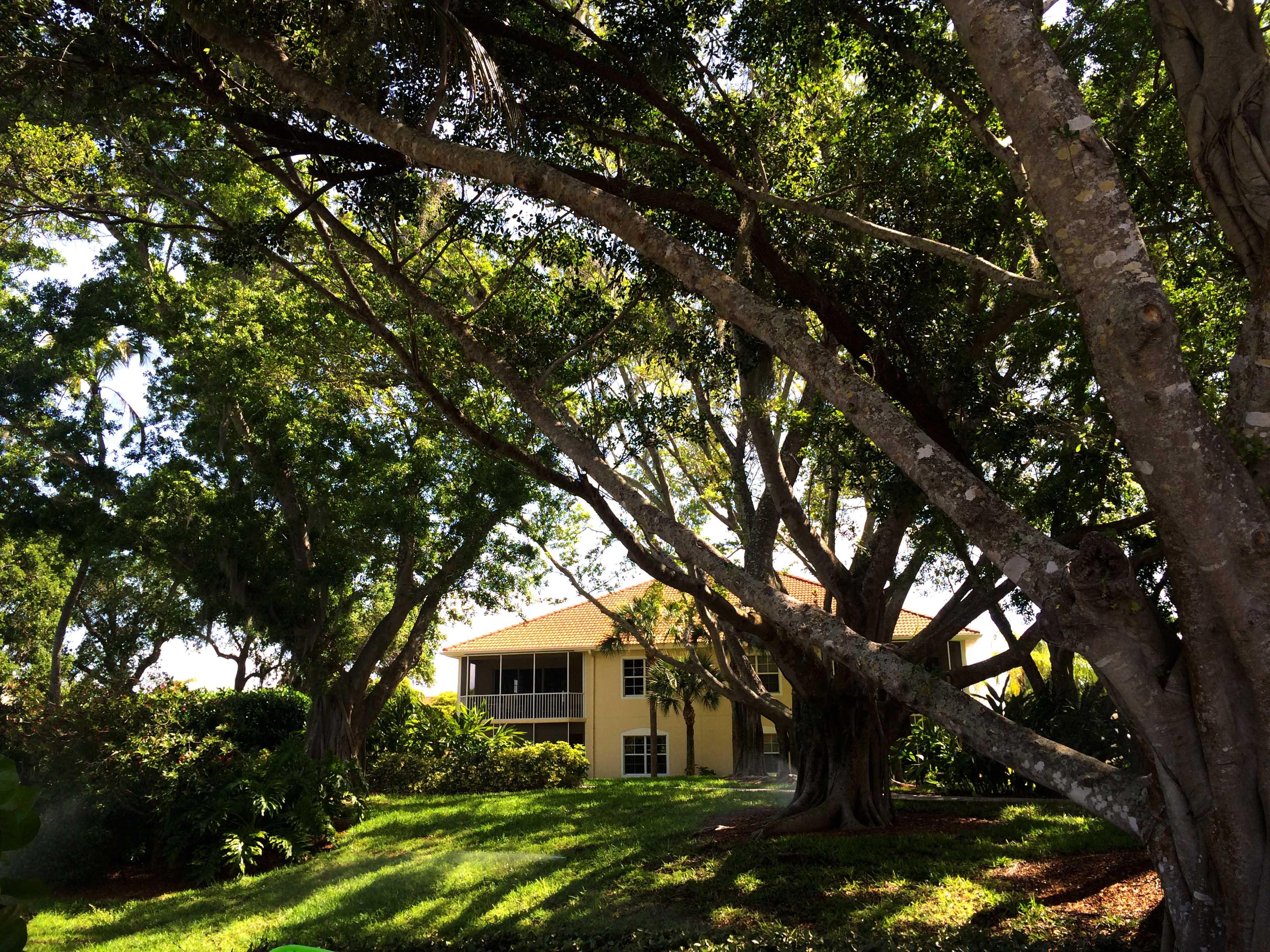 cape-coral-real-estate-tarpon-point-homes.jpg